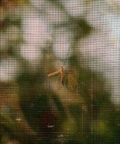 Guard N' Care Deurhor tegen insecten