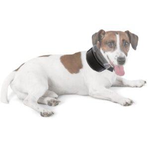 Orange85 Anti blafband apparaat hond