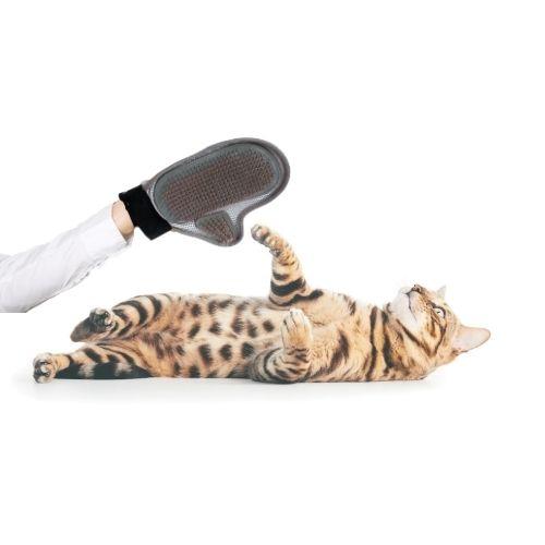 Orange85 Haarborstel handschoen voor hond of kat