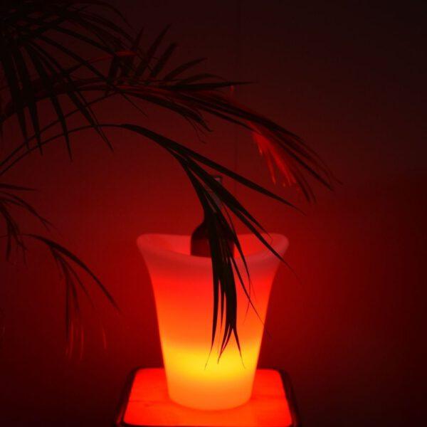 Orange85 Wijnkoeler met LED Verlichting Multicolor_sfeer