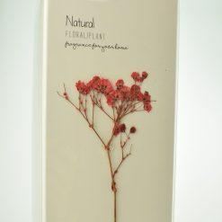 Orange85 Geurstokjes Wild Rose 200ml Vintage Botanical 2_detail