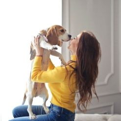 Hondenborstel slicker sfeerbeeld