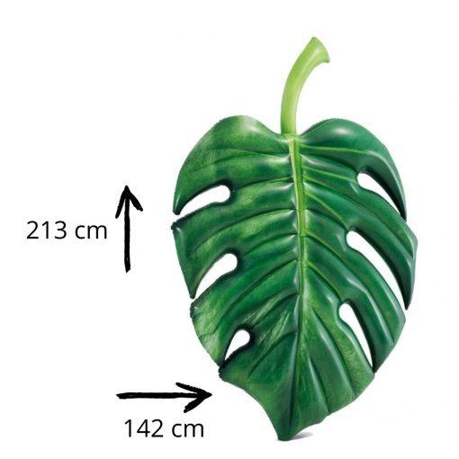 Luchtbed palmblad afmetingen