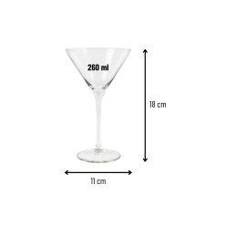 Orange85 Martini Glazen 260 ml Set van 2 3_