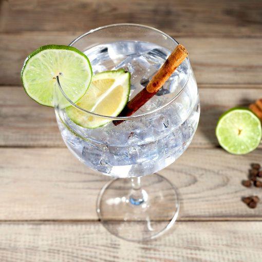 Gin Tonic glazen sfeer